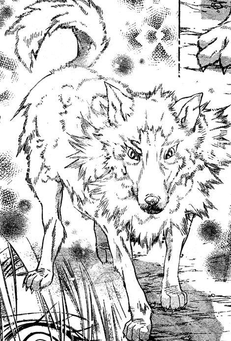 aobawolf